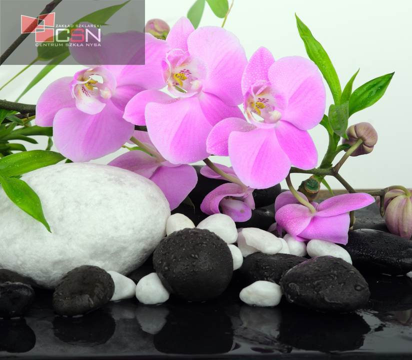 Spa concept: orchids, bamboo and stones